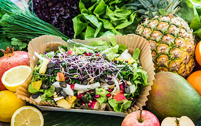 Power Salat (vegan)